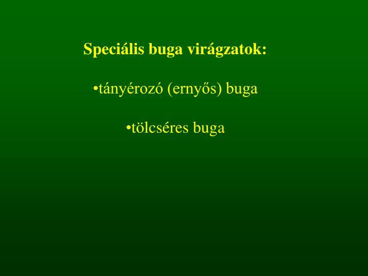 Speciális buga virágzatok: