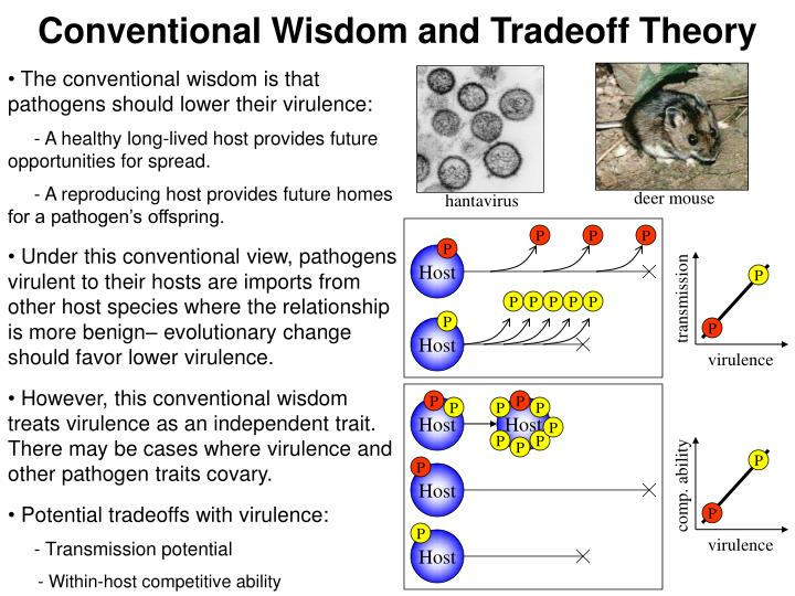 Conventional Wisdom and Tradeoff Theory