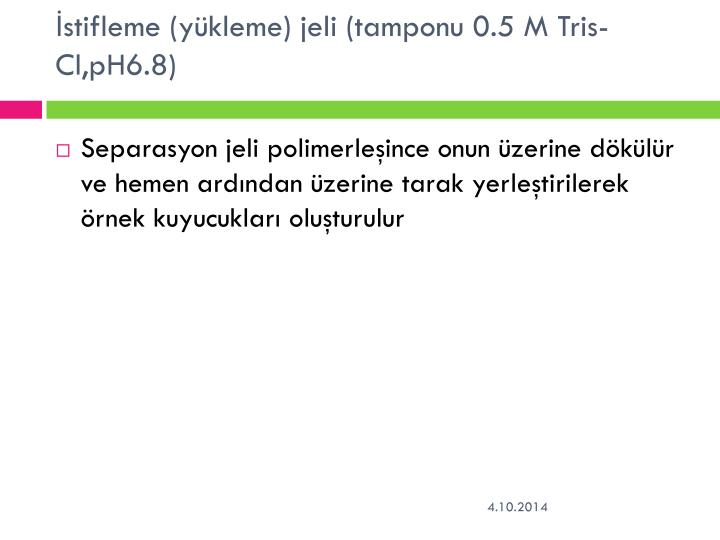 İstifleme (yükleme) jeli (tamponu 0.5 M Tris-Cl,pH6.8)