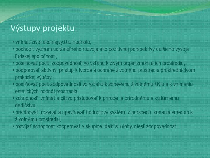 Výstupy projektu: