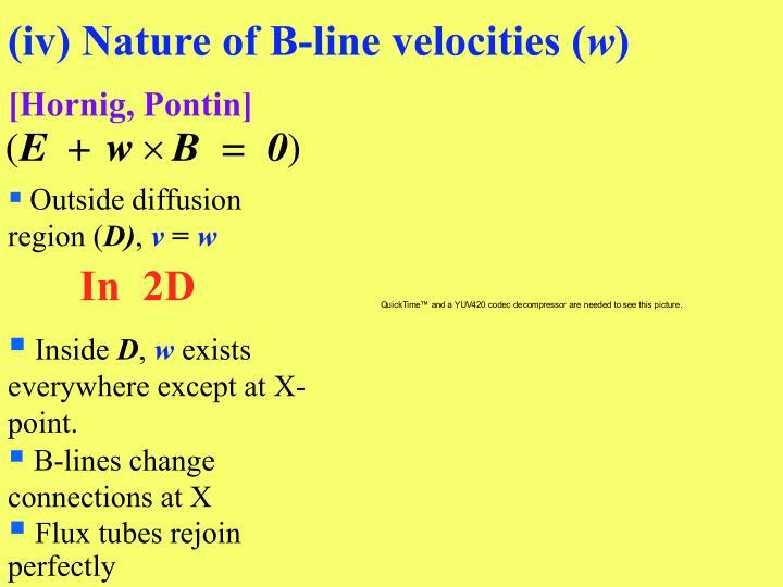 (iv) Nature of B-line velocities (
