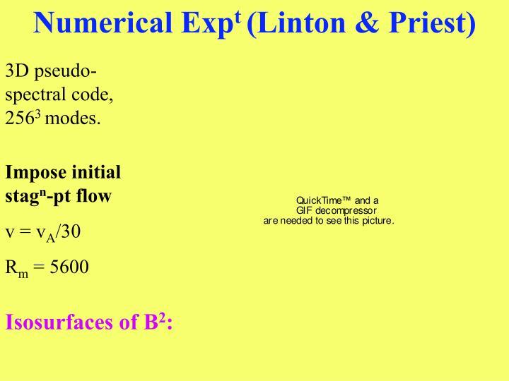 Numerical Exp