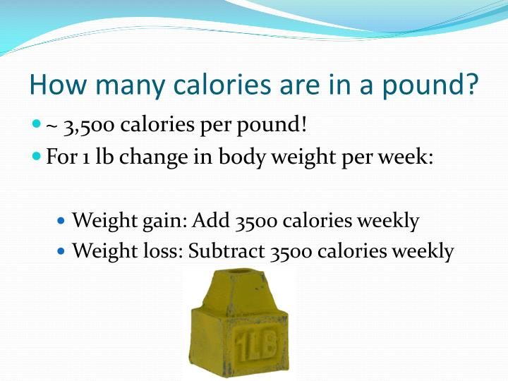 How many calories are in a pound?