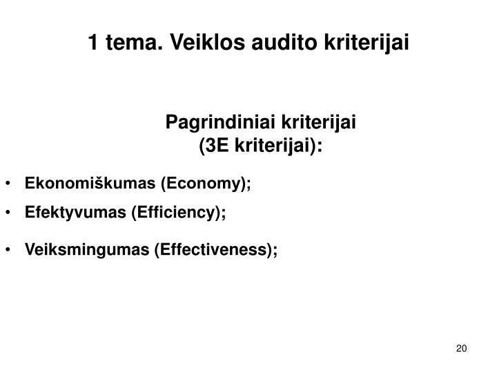 1 tema. Veiklos audito kriterijai