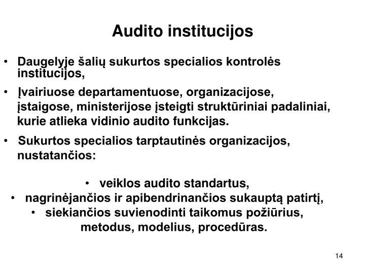 Audito institucijos