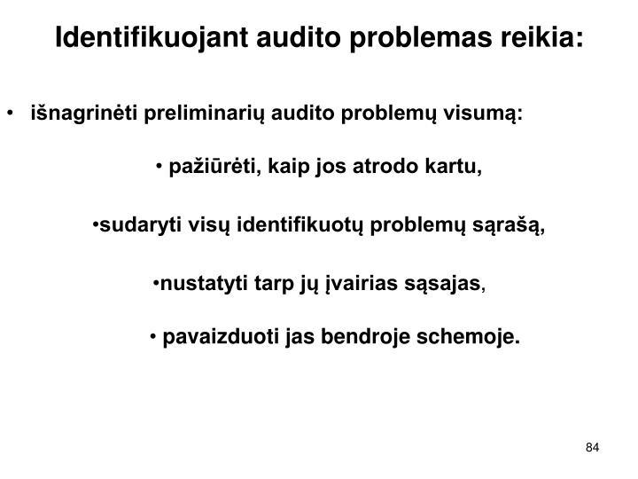 Identifikuojant audito problemas reikia: