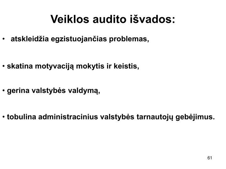 Veiklos audito išvados: