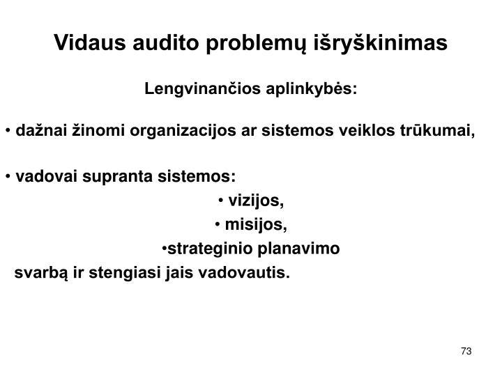 Vidaus audito problemų išryškinimas