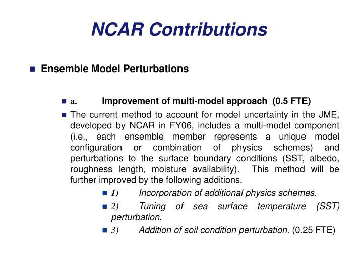 Ensemble Model Perturbations