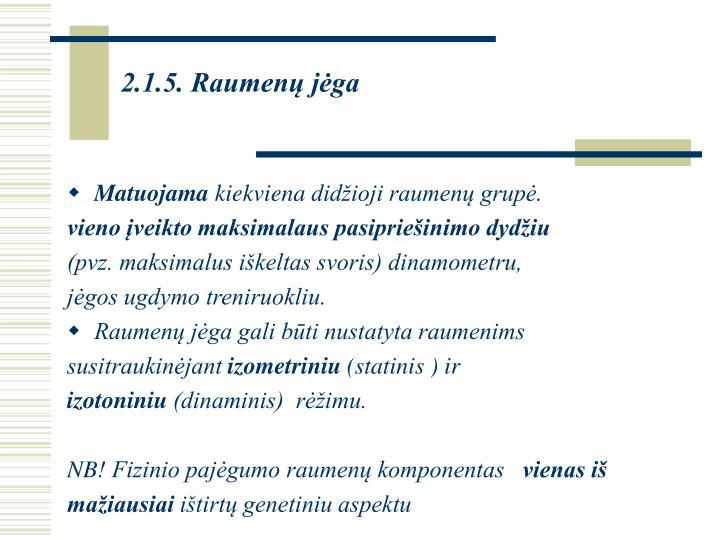 2.1.5. Raumenų jėga