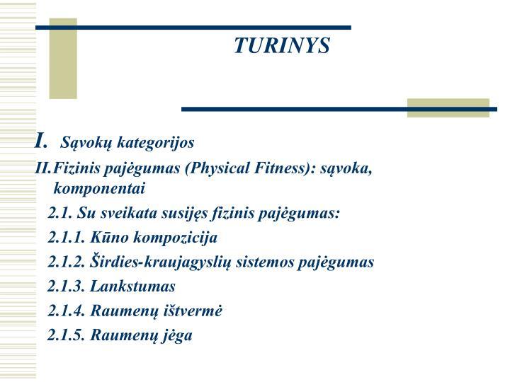 Turinys