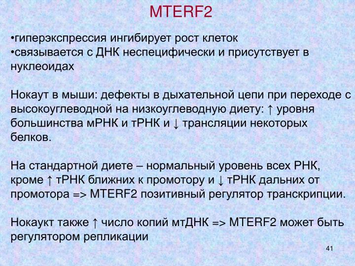MTERF