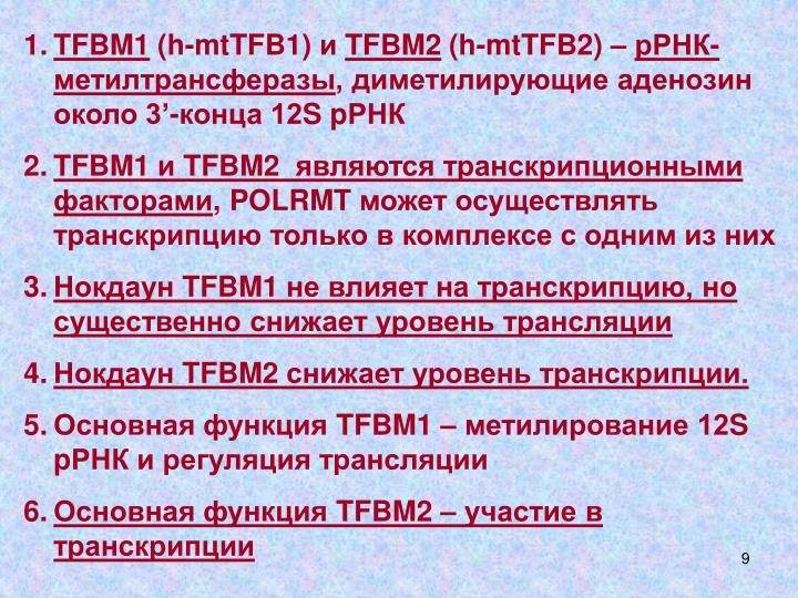 TFBM1