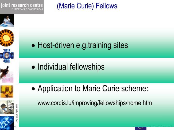 (Marie Curie) Fellows