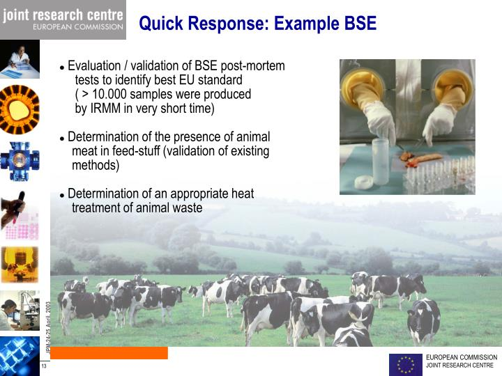 Quick Response: Example BSE