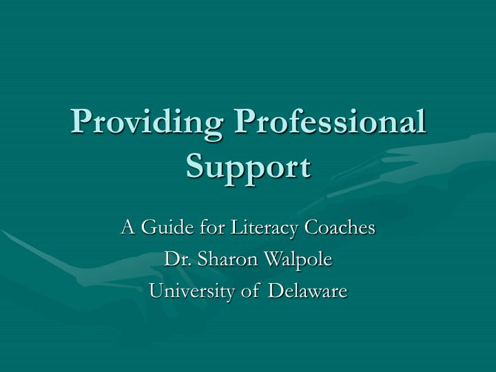 providing professional support n.