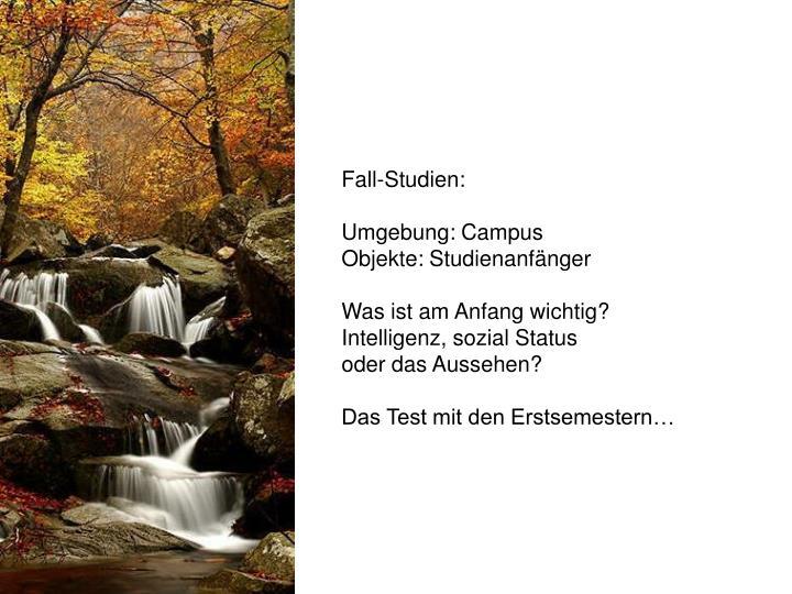 Fall-Studien: