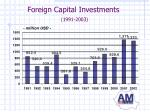 foreign capital investments 1991 2003