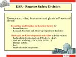 dsr reactor safety division