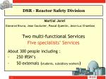 dsr reactor safety division1