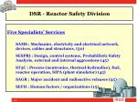 dsr reactor safety division2