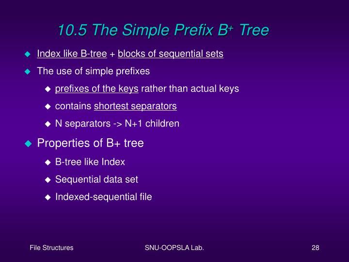 10.5 The Simple Prefix B