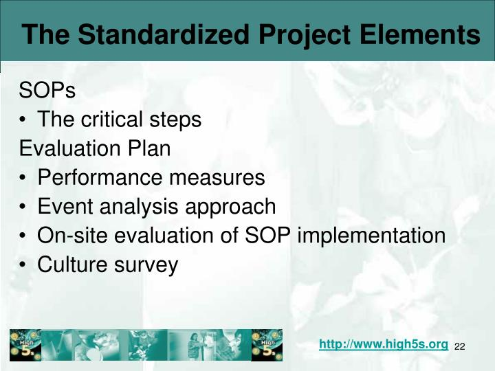 The Standardized Project Elements