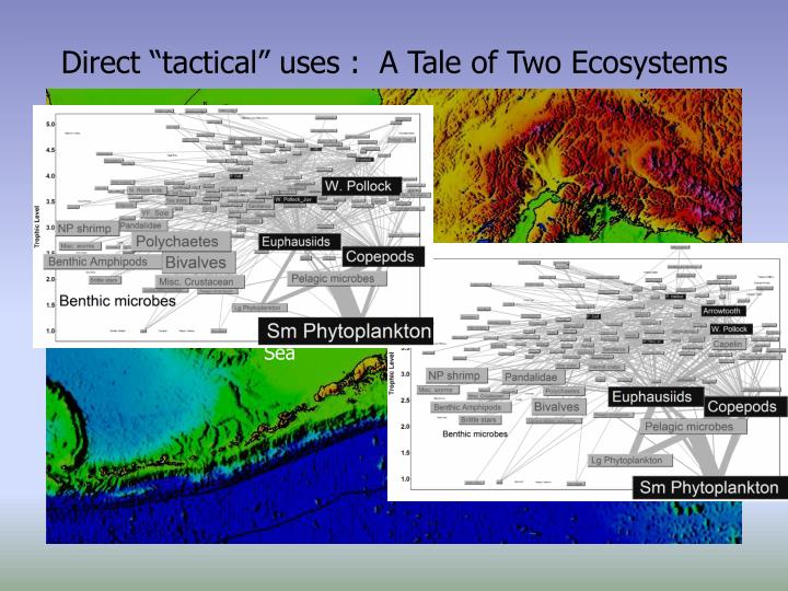 """Direct """"tactical"""" uses :  A Tale of Two Ecosystems"""