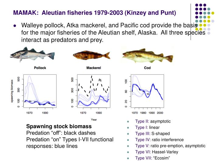 MAMAK:  Aleutian fisheries 1979-2003 (Kinzey and Punt)