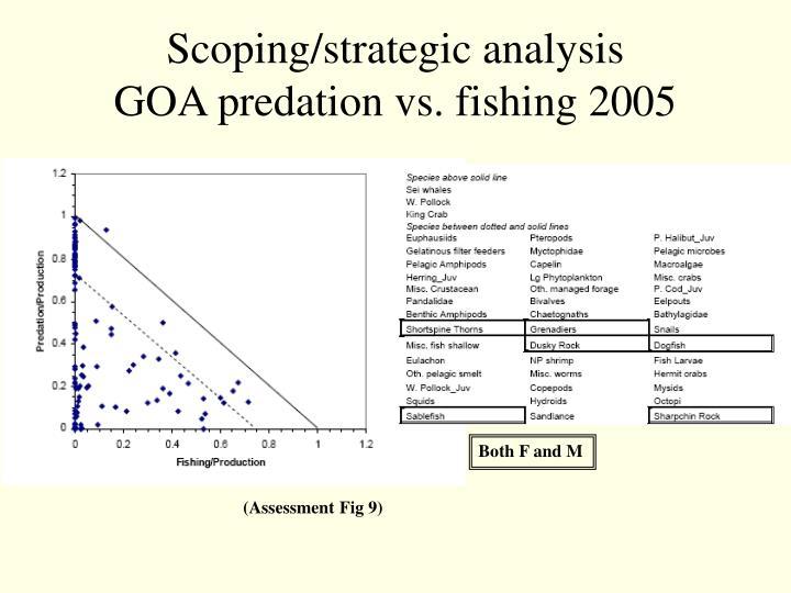 Scoping/strategic analysis