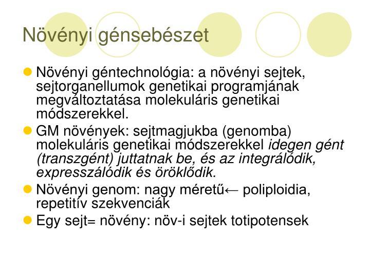N v nyi g nseb szet1