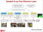 seeded x ray free electron laser1