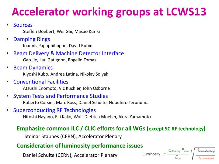 Accelerator working groups at LCWS13