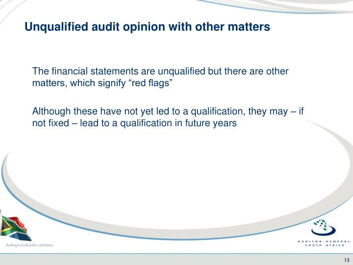 Unqualified audit opinion with other matters