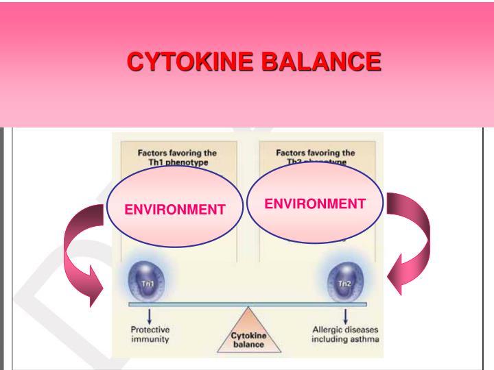 CYTOKINE BALANCE