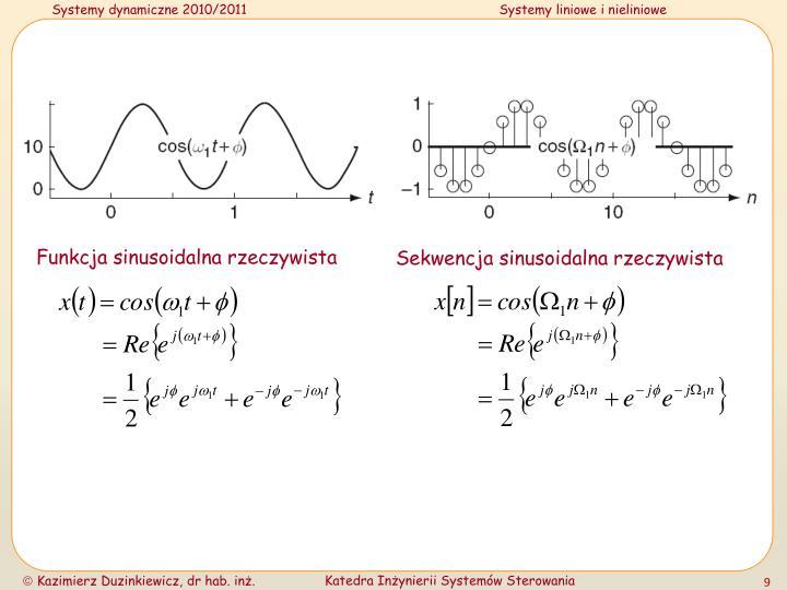 Funkcja sinusoidalna rzeczywista