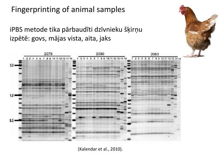 Fingerprinting of animal samples