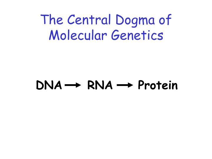 The Central Dogma of Molecular Genetics