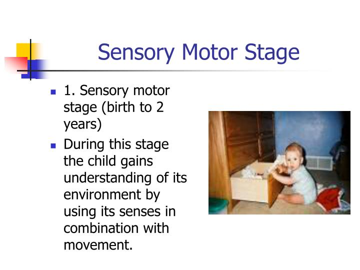1. Sensory motor stage (birth to 2 years)