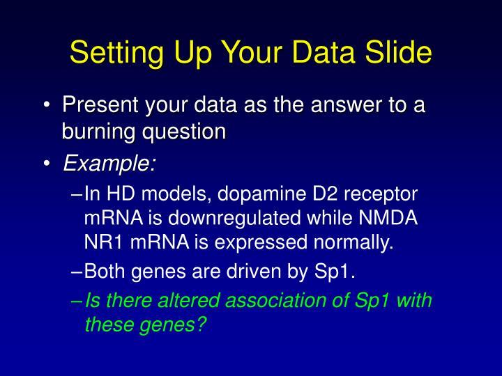Setting Up Your Data Slide