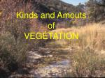 kinds and amouts of vegetation
