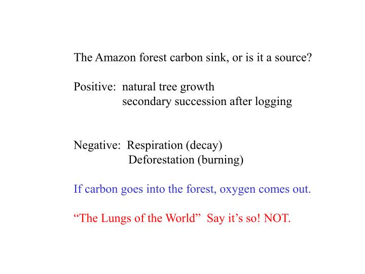 The Amazon forest carbon sink, or is it a source?