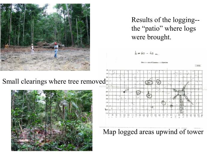 Results of the logging--