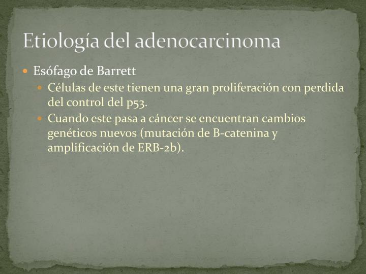 Etiología del adenocarcinoma