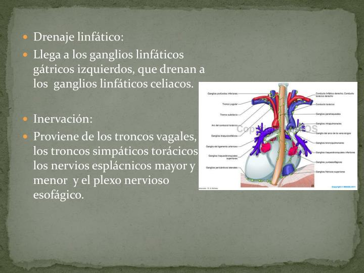 Drenaje linfático: