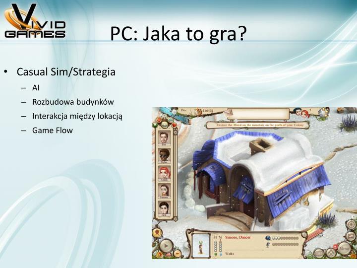 PC: Jaka to gra?