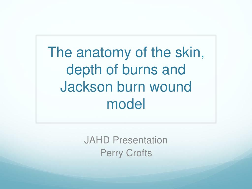Ppt The Anatomy Of The Skin Depth Of Burns And Jackson Burn Wound