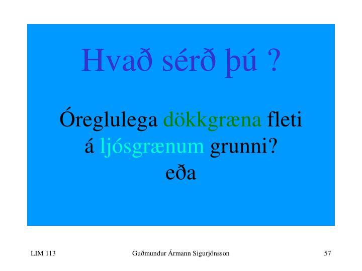 Hvað sérð þú ?