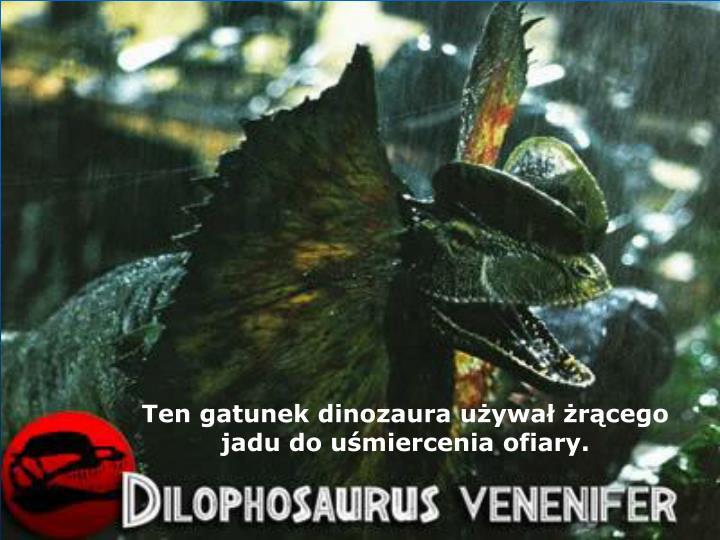 Ten gatunek dinozaura używał żrącego jadu do uśmiercenia ofiary.