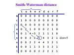 smith waterman distance